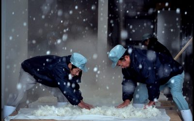Review: The Birth of Sake (United States, 2016)